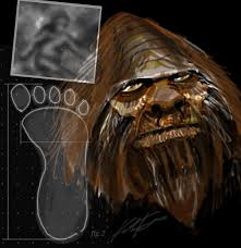 Et, and we do our best to return all emails within 48 hours. Bigfoot Vandalizes A Winnebago And Other Questionable Claims Live Science