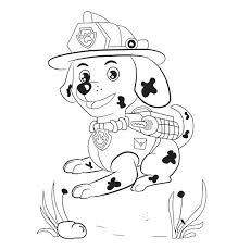 Paw Patrol Marshall Drawing At Getdrawingscom Free For Personal