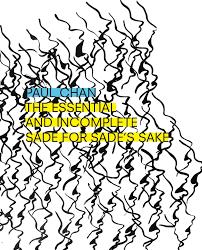 Soloist Wiring Diagram