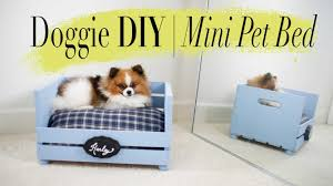 Diy Dog Bed Diy Super Easy Mini Dog Cat Bed Ann Le Youtube