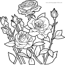 Roses Flowers Coloring Pages Color Plate Coloring Sheetprintable
