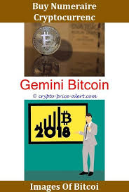 Bitcoin conspiracy theories range from the amusing to the sinister. Bitcoin Exchange Debit Card Bitcoin Gold Fork Bitcoin Cash Rate New Cryptocurrency Reddit Price Of Bitcoin Cash Next Cryptocurrency To Explode Get Bitcoin Exc