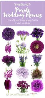 types of purple flowers types of wedding flowers list best purple flower names ideas on types types of purple flowers