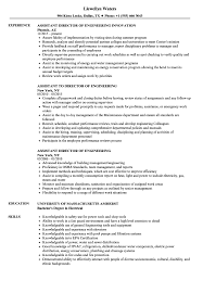 Director Of Engineering Resume Assistant Director Engineering Resume Samples Velvet Jobs 15