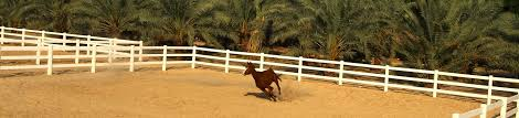 brown vinyl horse fence. STRONGEST VINYL HORSE FENCE MADE IN USA Brown Vinyl Horse Fence E
