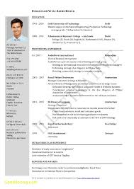 Elegant Resume Template Ms Word Free Download Best Templates