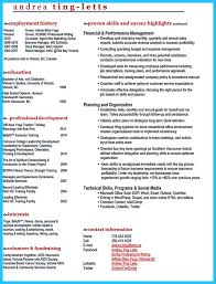 outstanding keys to make most attractive business owner resume small business owner resume examples