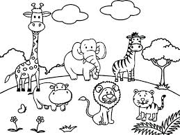 Coloring Pages Of Baby Zoo Animals The Color Panda