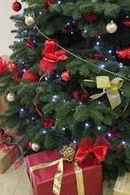 Office Christmas Trees Dublin Office Christmas Decoration
