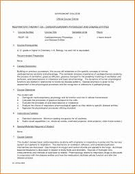 Example Of An Argumentative Essay College Essay Outline Template High School Research Paper