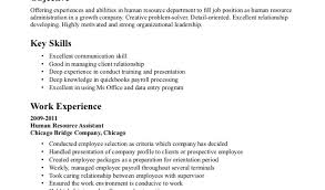 Sample Hr Resume Example Professional Resume