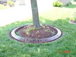 landscape ideas under pine trees lovely landscaping around trees can landscape design under pine trees