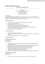 Bistrun Leasing Agent Resume Rental Property Manager Resume Agent