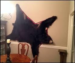 hanging a bearskin rug