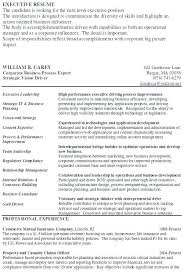 Insurance Sales Representative Sample Resume Delectable Best Of Insurance Agent Resume Examples Insurance Agent Resume