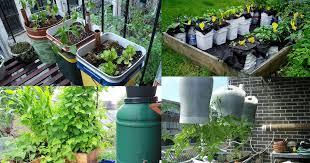 14 best diy self watering container garden ideas