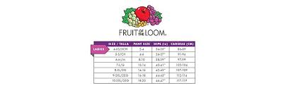 Fruit Of The Loom Lady Fit Size Chart Fruit Of The Loom Womens 4 Pack Flexible Fit Hipster