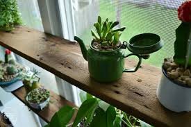 diy floating shelves in windowsill with succulent garden in vintage enamelware 4 of 8