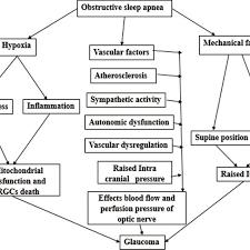 Flowchart Explains The Mechanisms Involved Pathophysiology