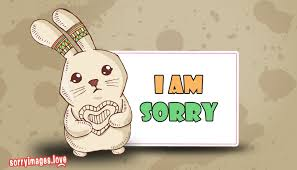 sorry wallpaper hd