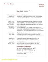 Merchandiser Resume Elegant Beautiful Merchandising Resume