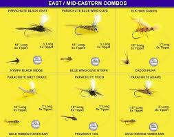 Fly Fishing Flies Chart Fly Fishing Flies Chart Photo 1 Fishing Equipment Fly