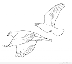 Small Picture 25 birds coloring pages for kids TimyKids