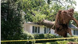What Does Homeowners Insurance Cover \u0026 How Much Do I Need?