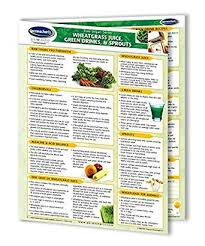 Wheatgrass Nutrition Chart Amazon Com Permachart Wheatgrass Sprouts Reference