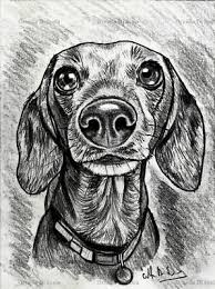Ritratto Su Commissione Da Foto Matita Su Cartoncino Cani O Gatti