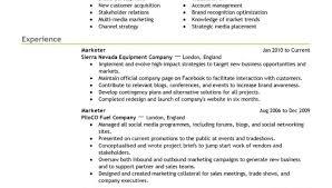 Professional Resume Writers Resume Best Professional Resume Writers Glorious Resume Layout 94
