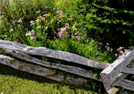Entry is free. q Mt Mitchell Fence & Flowers