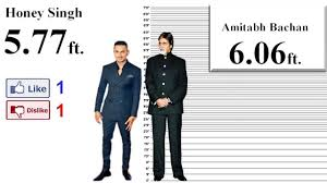 How Tall Are You Manlet
