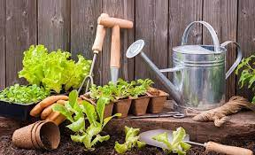 how to become a gardener startups co uk