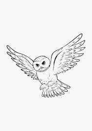 Uil Harry Potter Krijg Het Owl Cake Uil Taart Sculpted White Owl