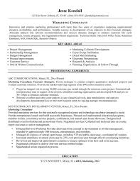 Business Development Consultant Resume Examples Sample Management