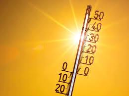 Hitzesommer 2019 Experten Warnen Vor Extrem Wetter