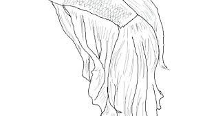 Betta Fish Coloring Page Fish Coloring Page Betta Fish Colouring