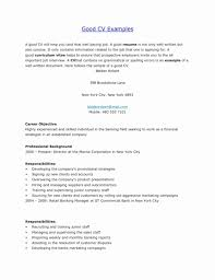 16 Resume Objective For Retail Brucerea Resume Templates Design
