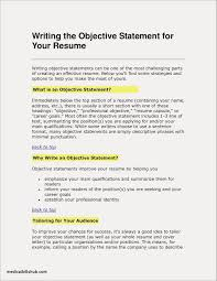 Resume Writing Objective Section Examples Free Resume Examples