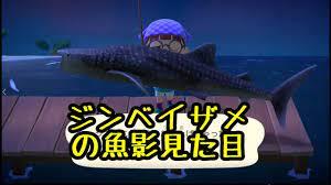 あつ 森 ジンベイザメ