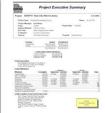 Executive Summary Report Example Template Gulflifa Co