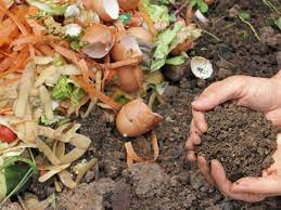 how to make healthy soil dr weil s