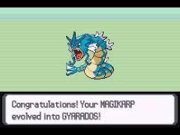 53 Valid Pokemon When Does Magikarp Evolve