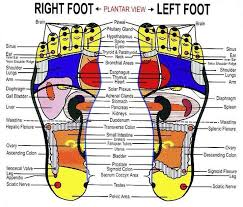 Foot Chinese Medicine Chart Chinese Medicine Our Voice Matters