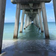 Image result for photos venice fishing pier