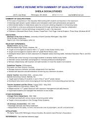 Resume Professional Summary Examples Amazing Resume Examples Templates How To Write Resume Summary Examples For