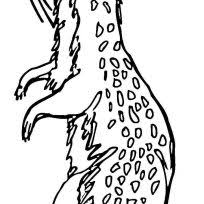 Small Picture Download For Free Prairie Dog Coloring Pages Animal falling in