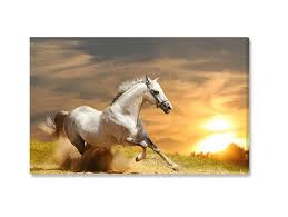 running white horse wall art