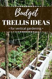 diy trellis ideas for growing a